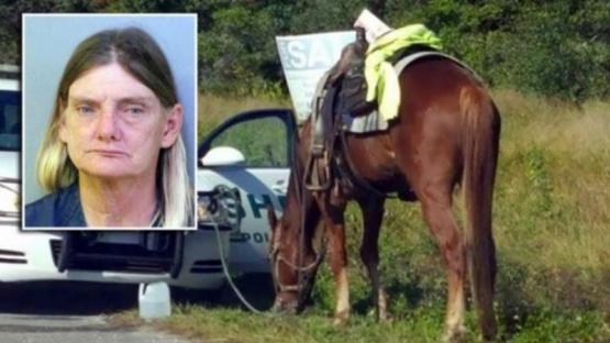 Detienen a una mujer que conducía borracha un caballo