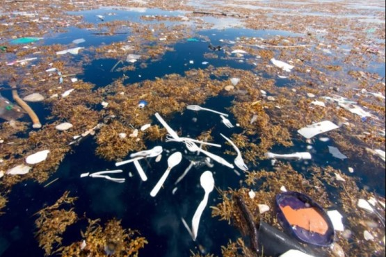 Alerta contaminación: cómo es el impactante