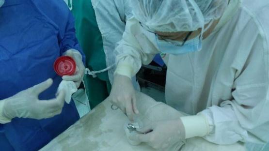Se realizó ablación multiorgánica en Hospital de Caleta Olivia
