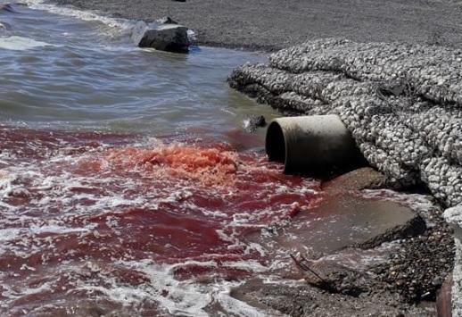 Se vuelve a viralizar imagen de sangre fluyendo en la costanera