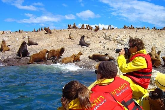 Puerto Deseado se prepara para recibir al primer turista de 2018