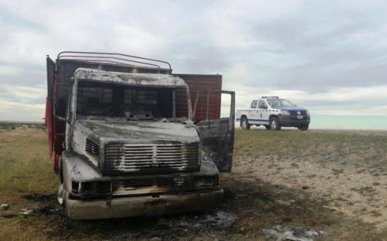 Camión que trasladaba ovejas se incendió