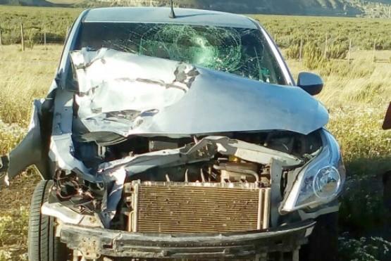 Viajaban a Tierra del Fuego y destruyeron el auto al chocar contra un guanaco