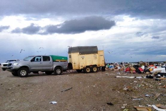 El otro lado de la basura en las calles