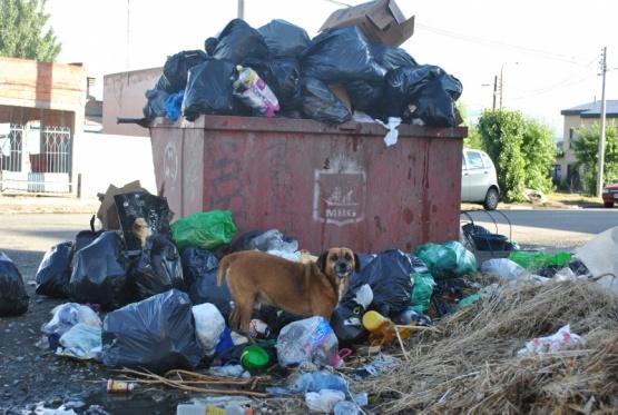 Algunos de los contenedores de la ciudad. (J.C.C)