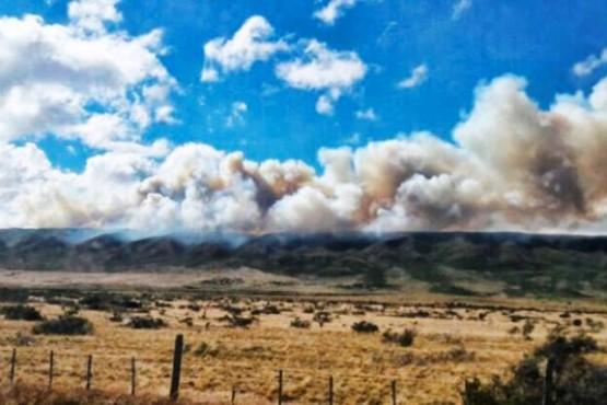 Informan de incendio forestal en estancia de San Gregorio y decretan alerta amarilla
