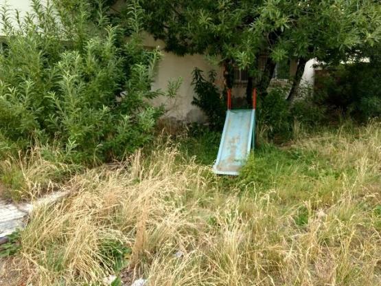 Por presencia de roedores habrían suspendido clases en el Jardín 19