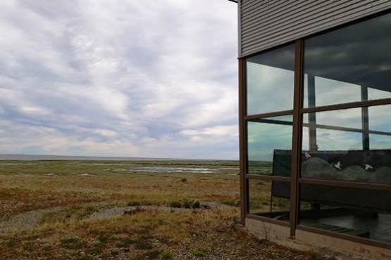 Un fin de semana para avistar aves y la marea extraordinaria