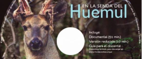 Fundación Banco Santa Cruz difundió sus contenidos educativos digitales
