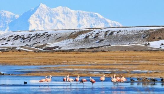 """""""Nos convocan para que aflojemos y digamos que sí a la ampliación del Parque Patagonia"""""""