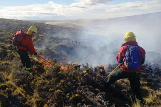 Tareas de asistencia y prevención de la Brigada de Incendios