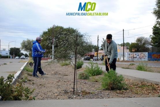 Relizan tareas de limpieza en los barrios de Caleta