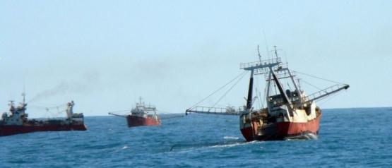 La prospección de langostino en aguas nacionales comenzará el 19 de mayo