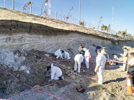 Hallan restos humanos cuando instalaban parque eólico