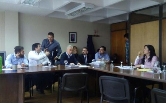Tamburo estuvo presente en la comisión.