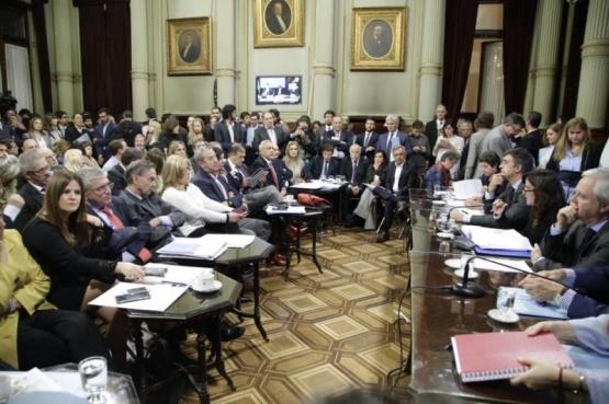 """""""Vamos a acompañar el dictamen aprobado en Diputados""""."""