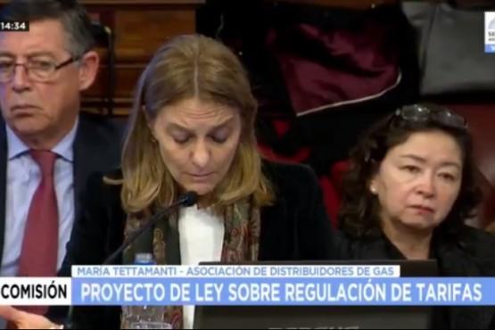 """Asociación de Distribuidoras de Gas habló del subsidio en Santa Cruz y """"veredas calefaccionadas"""""""