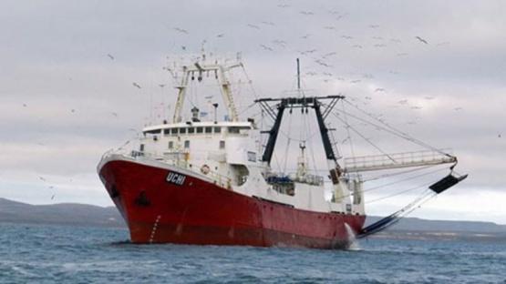 Chubut y Santa Cruz buscarán consenso para repartir el langostino