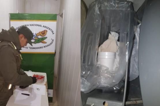 Hallan semillas de marihuana ocultas en el baño de un ómnibus que viajaba a Río Gallegos