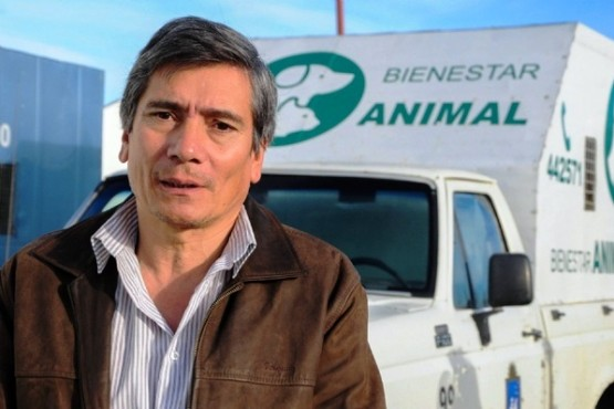 Guillermo Basualto, Bienestar Animal