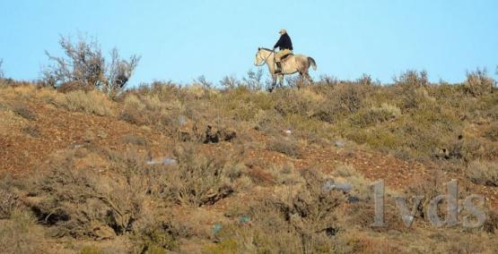 Con drones y caballos, buscaron a David Pérez