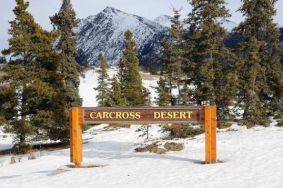 """Carcross, el """"desierto más pequeño del mundo"""""""