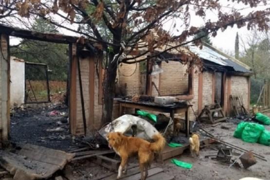 Más de 50 perros murieron calcinados durante el incendio de un refugio