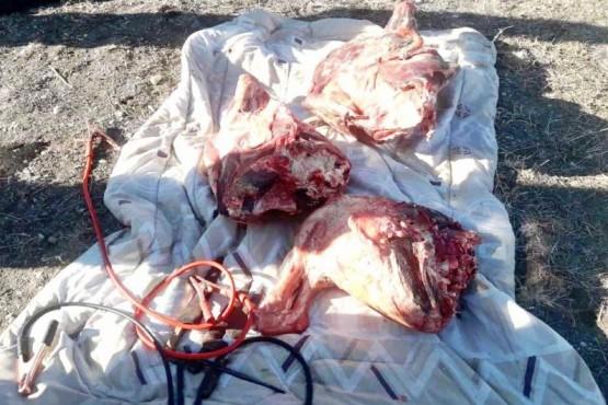 Secuestran carne faenada y detienen a dos sujetos