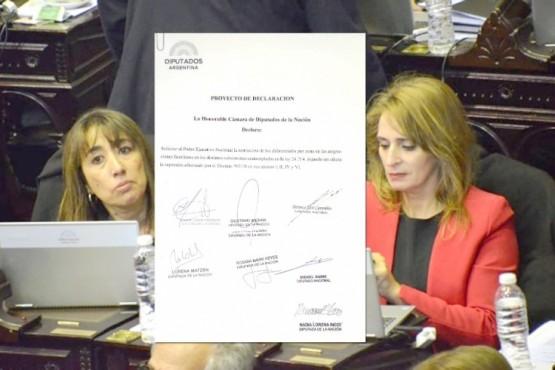La resolución firmada por las diputadas de Cambiemos Reyes y Ricci.