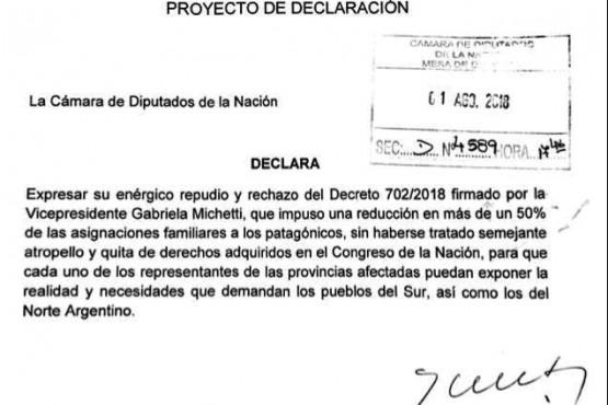 Diputados patagónicos no pudieron derogar el recorte (imagen de una declaración de Vázquez)
