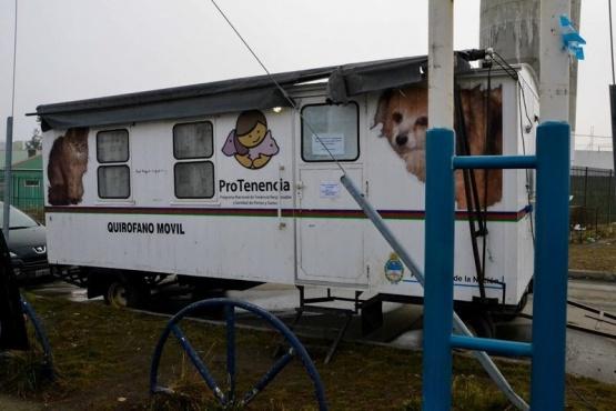 Más de 170 animales esterilizados en barrio 499