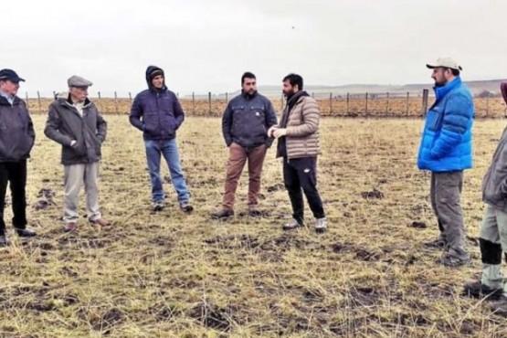 Argentino compartió experiencia por invasión de la 'pilosella'