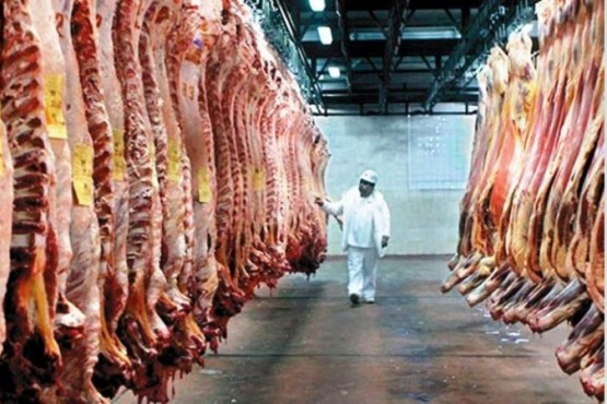 Cuánto cuesta la carne en Río Gallegos, Santa Fe y Capital Federal
