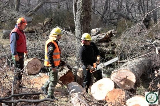 Avanza el programa de fortalecimiento de las brigadas de incendios