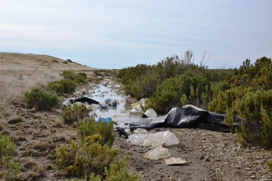 Jornada de limpieza en Río Chico