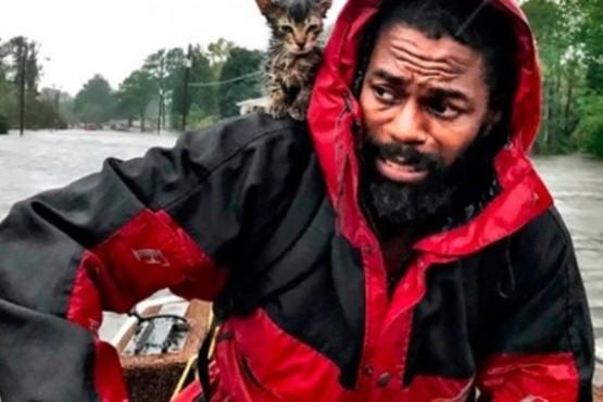 La foto viral del hombre que es rescatado junto a su gatito