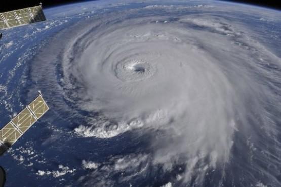 Huracanes y bacterias: ¿para qué sirven las catástrofes?