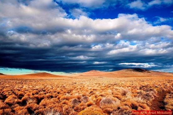 Nación creó la Reserva Silvestre Patagonia