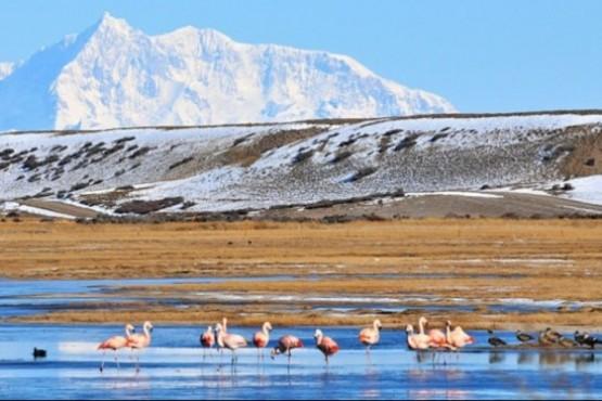 Diputados de UPVM rechazan creación por decreto de una Reserva Natural