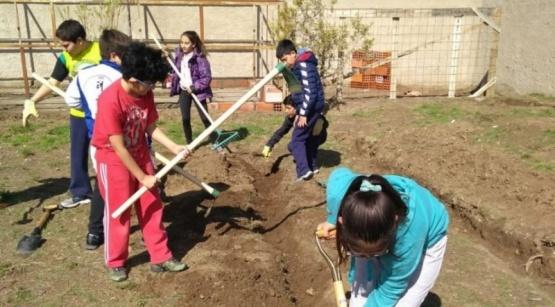 Una huerta escolar donará su cosecha a comedores