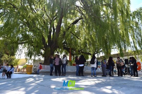 """Se inauguró el """"paseo del árbol"""""""