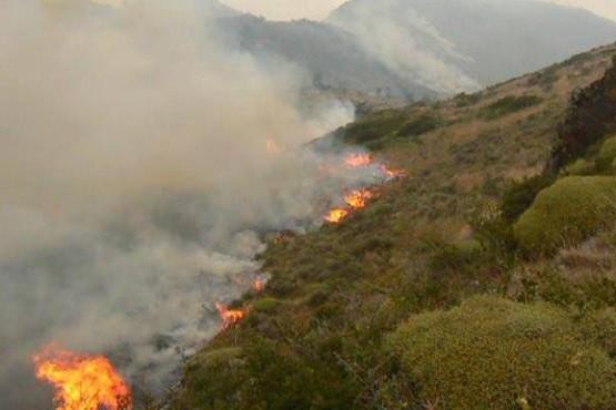 Inició la temporada de riesgo de incendios forestales