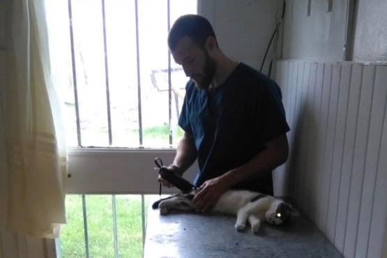 Se realizó una nueva jornada de esterilización de mascotas