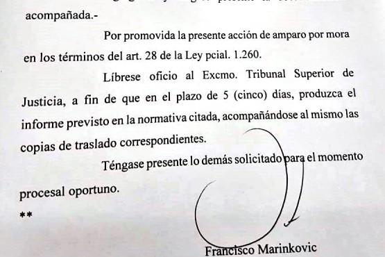El juez Francisco Marinkovic aceptó el amparo contra el TSJ y ordena respuesta en cinco días