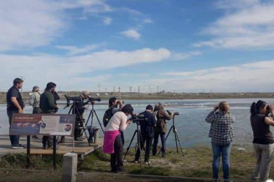 Se realizó capacitación sobre manejo de hábitat de aves playeras