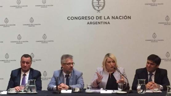 Bertone presentó a senadores proyecto de extensión del régimen industrial