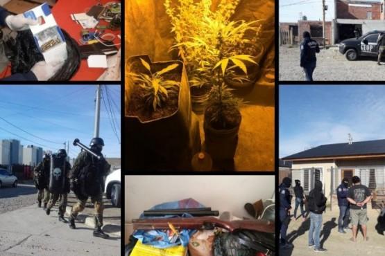 Descubren plantines de marihuana, armas y tumberas en ocho allanamientos
