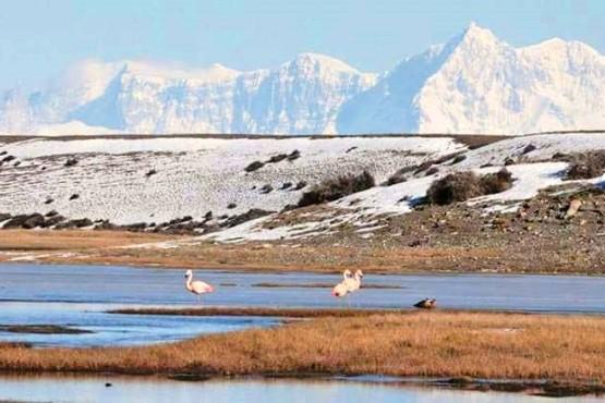 Pedirán informes a Parques Nacionales por no cumplir cargos y la tierra podría volver a donantes