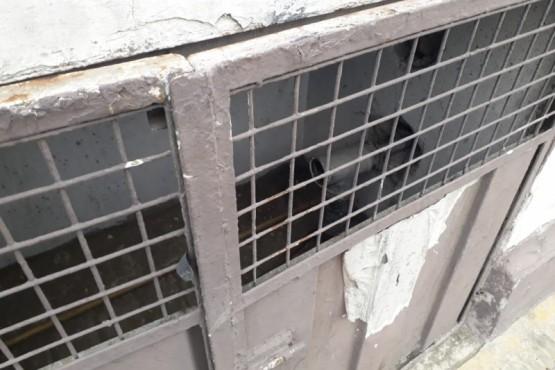 Le retiraron el medidor de gas al Municipio de Río Gallegos