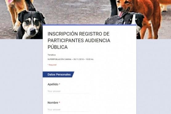 En Caleta buscan consensuar qué hacer frente a la sobrepoblación canina